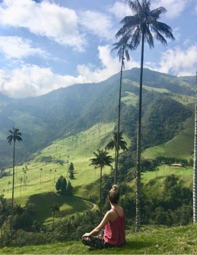 Blog de Viajes - Valle del Cocora
